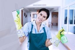 Steam Floor Cleaners
