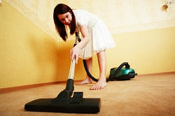 Dry Steam Carpet Cleaning Rental