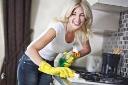 Household Cleaners in London