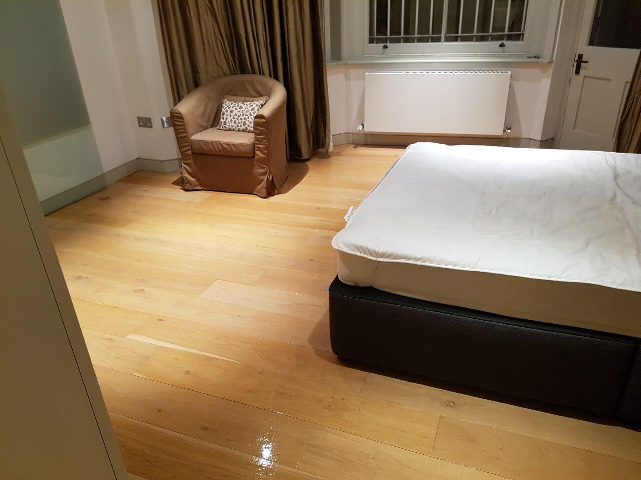 domestic cleaning SW1