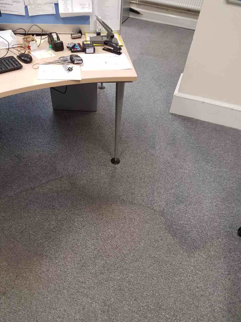 HA5 carpet cleaning